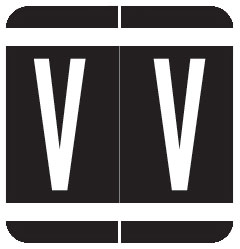 S-1900A-V - GBS Compatible Alpha Labels, Letter