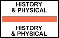 S-8045 - Stick On Index Tabs, HISTORY & PHYSICAL (Orange) 1-1/2