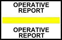 S-8052 - Stick On Index Tabs, OPERATIVE REPORT (Yellow) 1-1/2