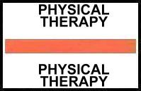 S-8074 - Stick On Index Tabs, PHYSICAL THERAPY (Orange) 1-1/2