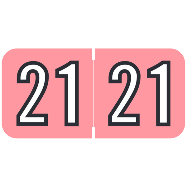 S-9229-21 - 2021 Year Labels, Pink, Barkley Compatible, 3/4