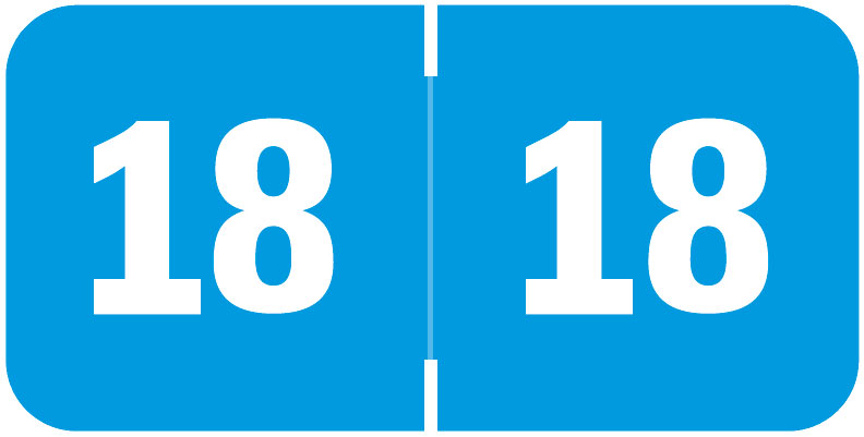 S-9232-18 - 2018 Year Labels, Light Blue, Tabbies Compatible, 3/4