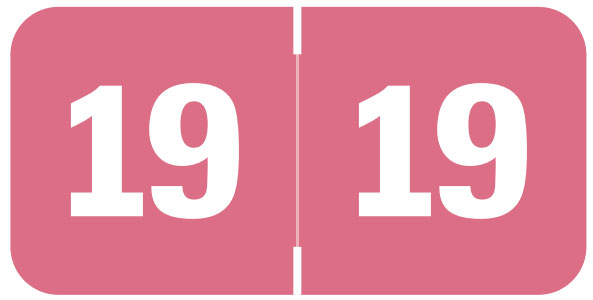 S-9232-19 - 2019 Year Labels, Pink, Tabbies Compatible, 3/4