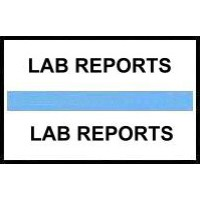 Stick On Index Tabs, LAB REPORTS (Lt Blue)