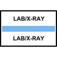 Stick On Index Tabs, LAB/X-RAY (Lt Blue)