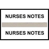 Stick On Index Tabs, NURSES NOTES (Gray)