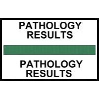 Stick On Index Tabs, PATHOLOGY RESULTS (Green)
