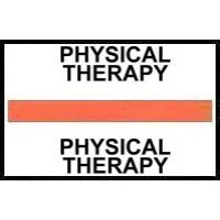 Stick On Index Tabs, PHYSICAL THERAPY (Orange)