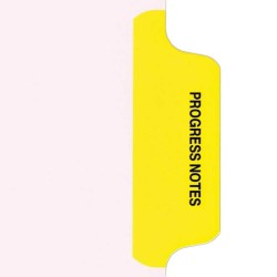 Individual Stock Chart Divider Tabs, Progress Notes, Yellow, Side Tab, 1/6th Cut, Pos. #2 (Pack of 25)