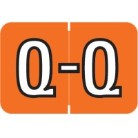 "Barkley ABKM Compatible Alpha Labels, Letter ""Q"", Laminated Stock, 1"" X 1-1/2"" Individual Le..."