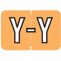 "Barkley ABKM Compatible Alpha Labels, Letter ""Y"", Laminated Stock, 1"" X 1-1/2"" Individual Le..."