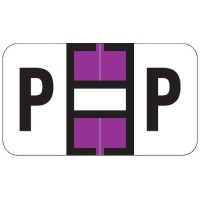 "Jeter 7200 Compatible Alpha Labels, Letter ""P"",  Laminated Stock, 15/16&#34 X 1-5/8&#34 Indi..."