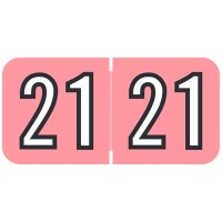 Pink 2021 Year Labels, Barkley Compatible, Bulk