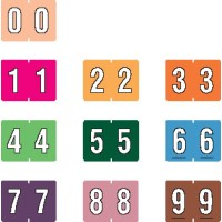 "Data File Compatible Numeric Labels, Laminated Stock, 15/16"" X 1-1/4"" Individual Numbers - R..."