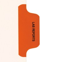 Individual Chart Divider Tabs, Lab Reports (Orange)